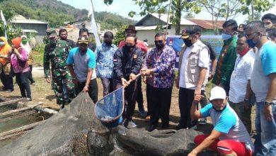 Photo of Hendri Septa: Apresiasi Budidaya Ikan di Tengah Covid-19, UEP Karta Jaya Tarantang
